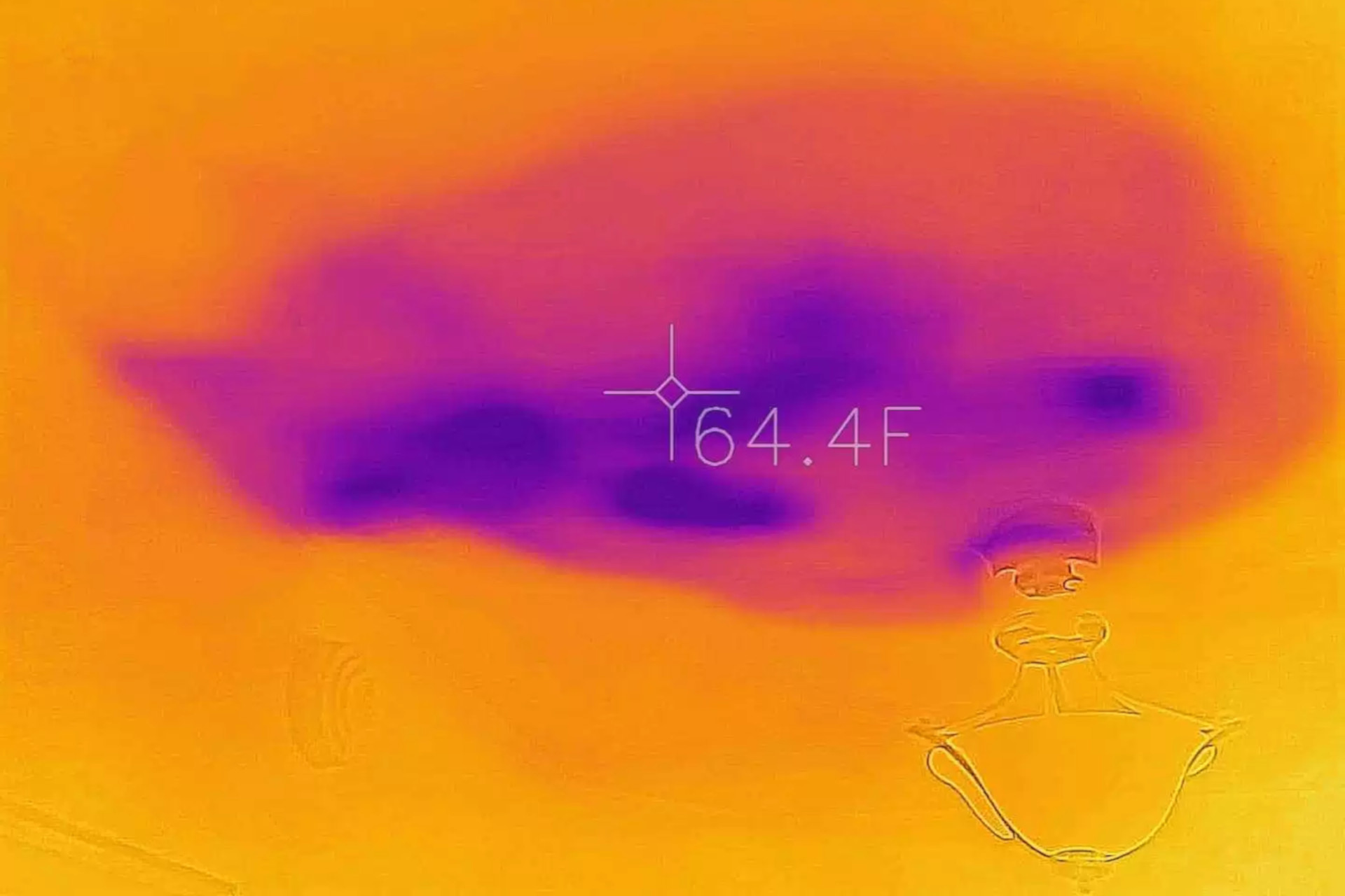 Mould detection via thermal imaging